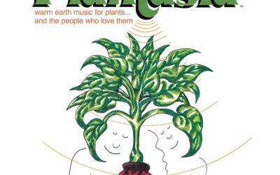 Kortrijm 10: spirituele folk en muziek voor uw kamerplanten